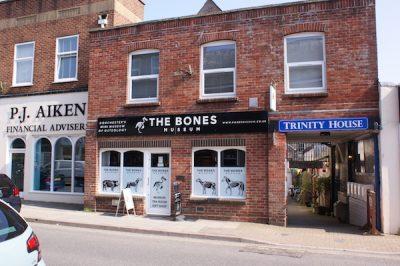 Bones Museum, Triinity Street, Dorchester